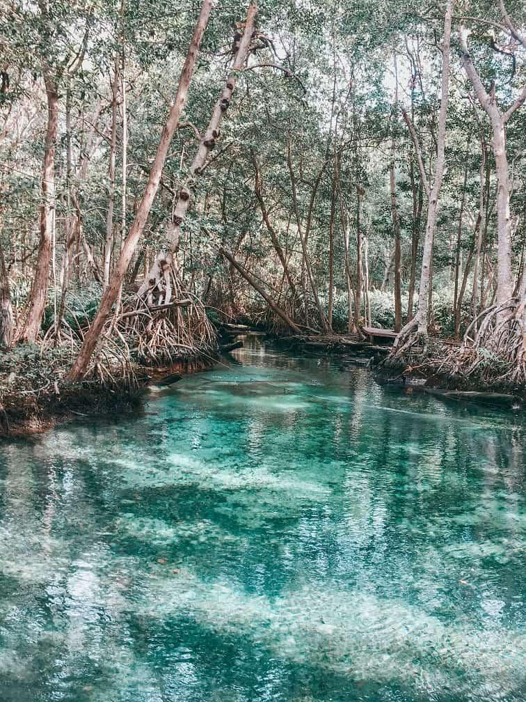 Celestún: Eco-tourist paradise of the state of Yucatán.