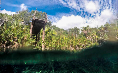 CENOTE-CRISTAL2.png