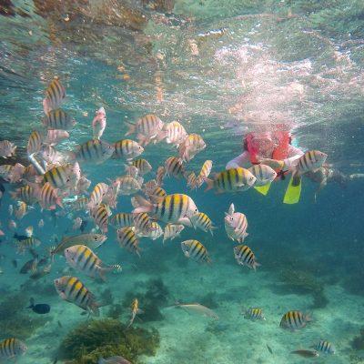 Isla Mujeres Kay (14)
