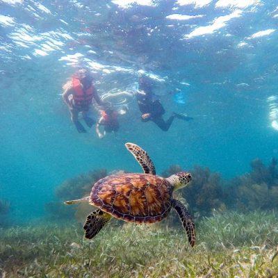 Isla Mujeres Kay (7)