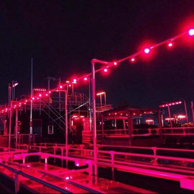 reina-roja-roof-top-night